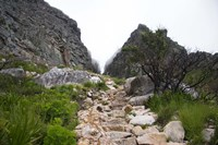 Hiking Up Table Mountain, Cape Town, Cape Peninsula, South Africa Fine-Art Print