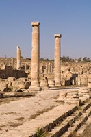 Ancient Architecture, Sabratha Roman site, Libya Fine-Art Print