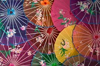 Colorful Silk Umbrellas, China Fine-Art Print