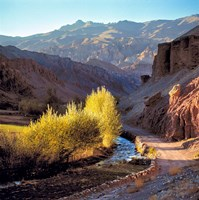 Afghanistan, Bamian Valley, Dirt road and stream Fine-Art Print