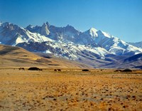 Afghanistan, Bamian Valley, Mountains, Kuchi camp Fine-Art Print