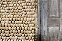 Cowrie shells on wall of building, Ibo Island, Morocco Fine-Art Print