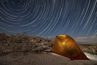 Star trails above a campsite in Anza Borrego Desert State Park, California Fine-Art Print