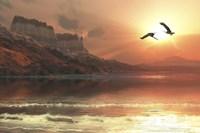 Two Bald Eagles fly along a mountainous coastline at sunset Fine-Art Print