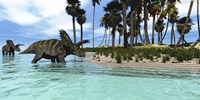 Two Coahuilaceratops dinosaurs wade through tropical waters Fine-Art Print