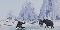 A Woolly Mammoth struggles for survival as he falls through ice on a frozen lake Fine-Art Print