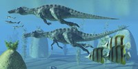Two Suchomimus dinosaurs search for big fish prey underwater Fine-Art Print