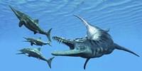 Liopleurodon reptile hunting Ichthyosaurus dinosaurs in Jurassic seas Fine-Art Print