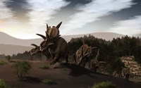 Herd of Xenoceratops foremostensis from the Cretaceous Period Fine-Art Print