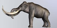 Profile view of Columbian Mammoth Fine-Art Print