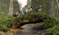 A group of Dodo birds crossing a natural bridge over a stream Fine-Art Print