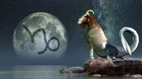 Capricorn is the tenth astrological sign of the Zodiac Fine-Art Print