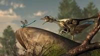 An Archaeopteryx stalks a dragonfly on a rock Fine-Art Print