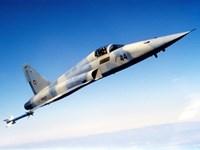 An F-5E Tiger II in flight Fine-Art Print