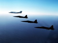 Three F-5E Tiger IIs fly in formation with a Learjet 25 Fine-Art Print