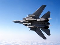 An F-14A Tomcat with missile armament Fine-Art Print