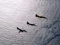 An F-5F Tiger II, F-5E Tiger II and A-4 Skyhawk Fine-Art Print