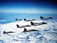 Four F-14 Tomcats and three F-5 Tiger IIs in flight Fine-Art Print