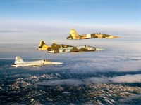 Four F-5 Tiger II's fly above Southern California Fine-Art Print