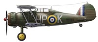 A Gloster Gladiator Mk II Fine-Art Print