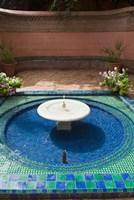 Jardin Majorelle, Marrakech, Morocco, North Africa Fine-Art Print
