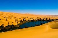 Libya, Fezzan, desert Erg Ubari, Umm el Maa lake Fine-Art Print