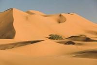 MOROCCO, Tafilalt, MERZOUGA: Erg Chebbi Desert Fine-Art Print