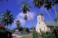 St Mary's Church and Palm Trees, Seychelles Fine-Art Print