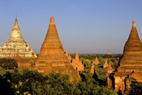 Temples of Bagan Surrounded by Trees, Bagan, Myanmar Fine-Art Print