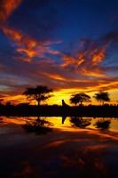 Sunrise, Okaukuejo Rest Camp, Etosha National Park, Namibia Fine-Art Print