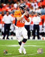 Peyton Manning 2014 Running Fine-Art Print