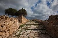 Tunisia, Carthage, Roman Villas, Ancient Architecture Fine-Art Print