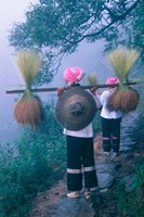Zhuang Girls Carrying Hay, China Fine-Art Print