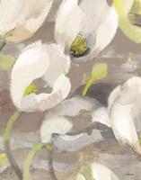 Tulip Delight I Fine-Art Print