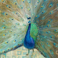 Blue Peacock on Gold Fine-Art Print