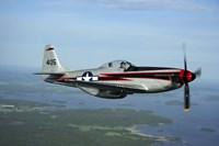 North American P-51 Cavalier Mustang Fine-Art Print