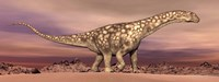 Large Argentinosaurus dinosaur walking in the desert Fine-Art Print