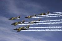 Swedish Air Force Saab jet Fine-Art Print