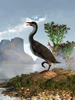 Hesperornis on the shore of a lake looking around Fine-Art Print