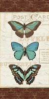 Papillons I Fine-Art Print