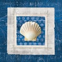 Sea Shell III on Blue Fine-Art Print