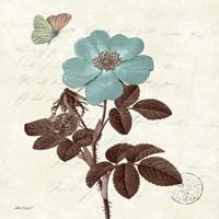 Touch of Blue II Fine-Art Print