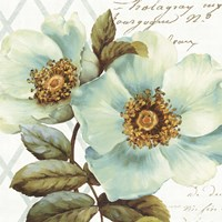 White Floral Bliss I Fine-Art Print