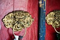 Dragon Head Door Grip, Likir, Ladakh, India Fine-Art Print