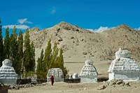 White Stupa Forest, Shey, Ladakh, India Fine-Art Print