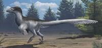 A mid-sized Cretaceous China deinonychosaur Fine-Art Print