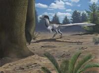 A deinonychosaur leaves tracks across a Cretaceous China landscape Fine-Art Print