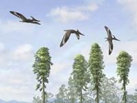 Pteranodon longiceps trio, two males and a female Fine-Art Print