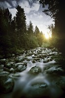 Small river flowing over large stones at sunset, Pirin National Park, Bulgaria Fine-Art Print