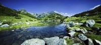 Ribno Banderishko River in Pirin National Park, Bulgaria Fine-Art Print